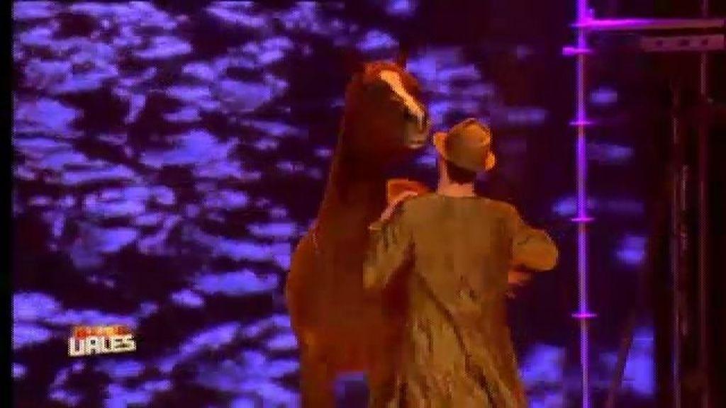 Shercam Shows, el hombre que controlaba a los caballos, se alza con la victoria
