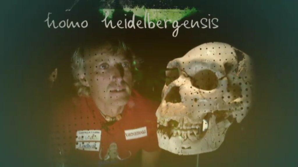 Atapuerca, viaje al origen del hombre
