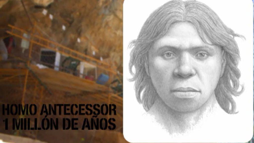 Homo Antecessor, descubierto en Atapuerca