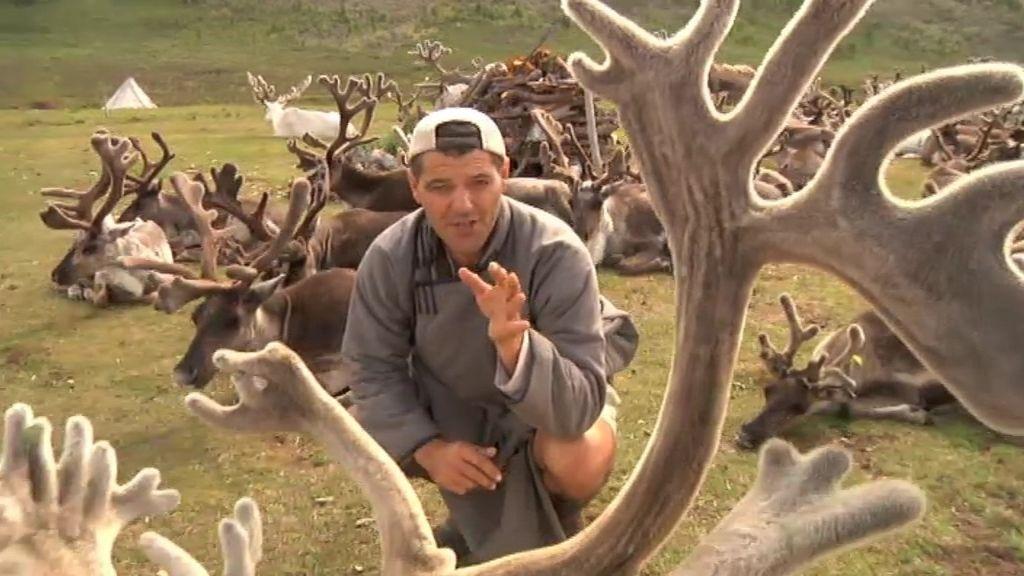Frank, rodeado de los últimos renos