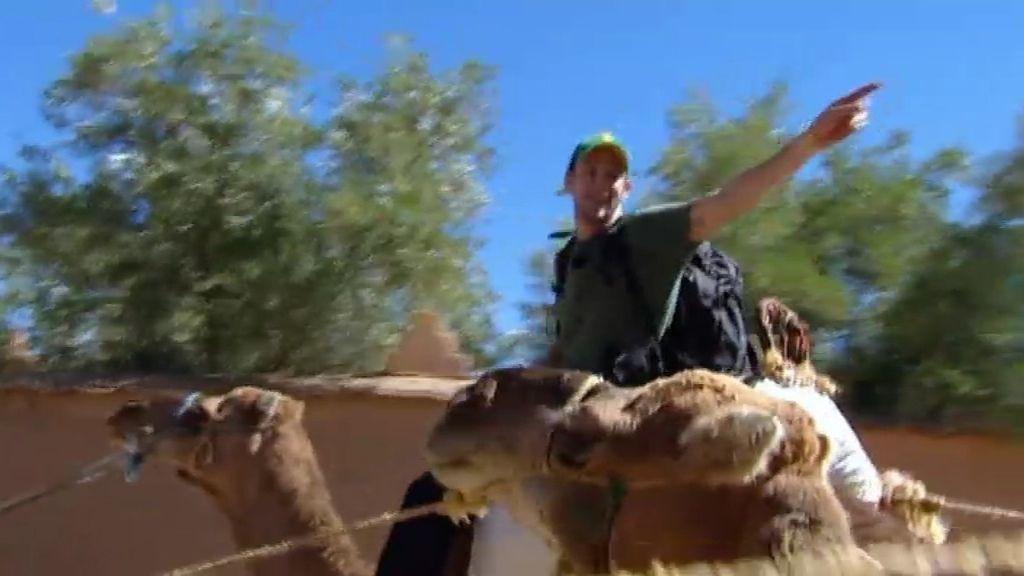 Bronca entre Álex y Rafa Amargo en la carrera de camellos