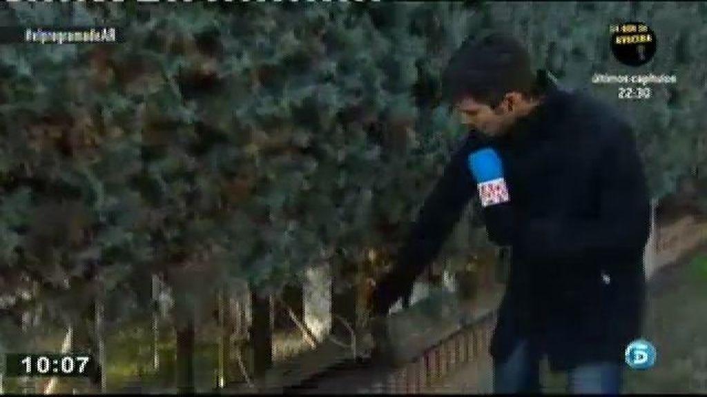 Los asaltantes de la casa de Camilo Sesto entraron a través de un agujero que había en la valla