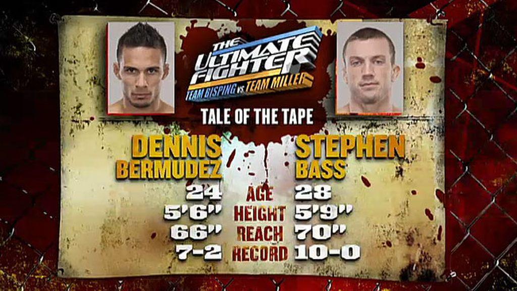 Dennis vs. Stephen
