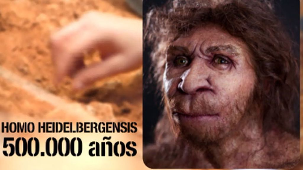 El Homo Heidelbergensis, dentro de la Sima