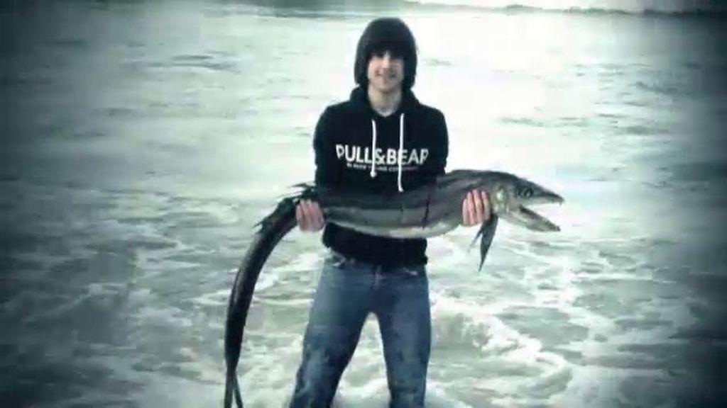 ¿Qué tipo de pez es este?