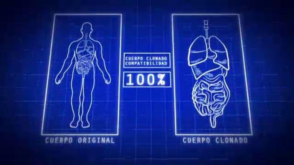 La clonación humana, ¿avance o peligro?