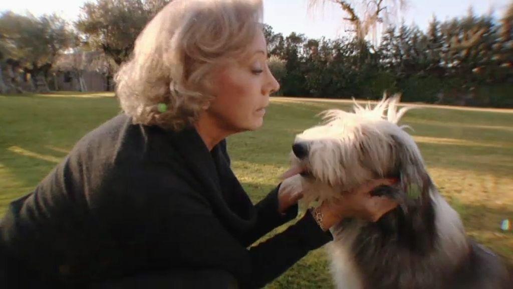 Visi nos presenta a sus perros y su mansión