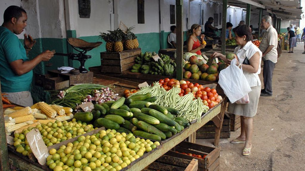 La cumbre de la FAO no ha conseguido medidas concretas contra la subida de los alimentos. FOTO: EFE