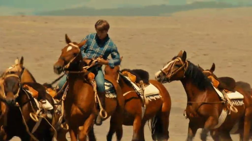 El reto: Guiar a caballo 250 vacas