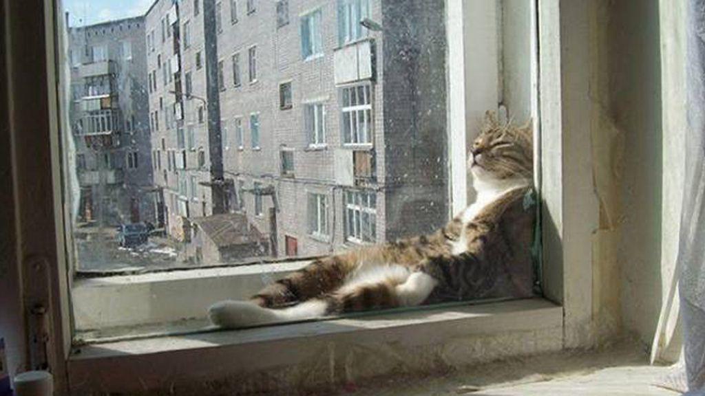 La siesta es sagrada, estés donde estés