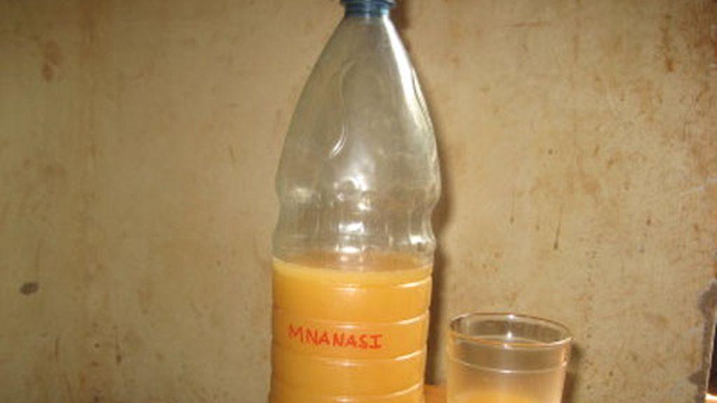 cerveza envenenada, Mozambique, bilis de cocodrilo, Songo