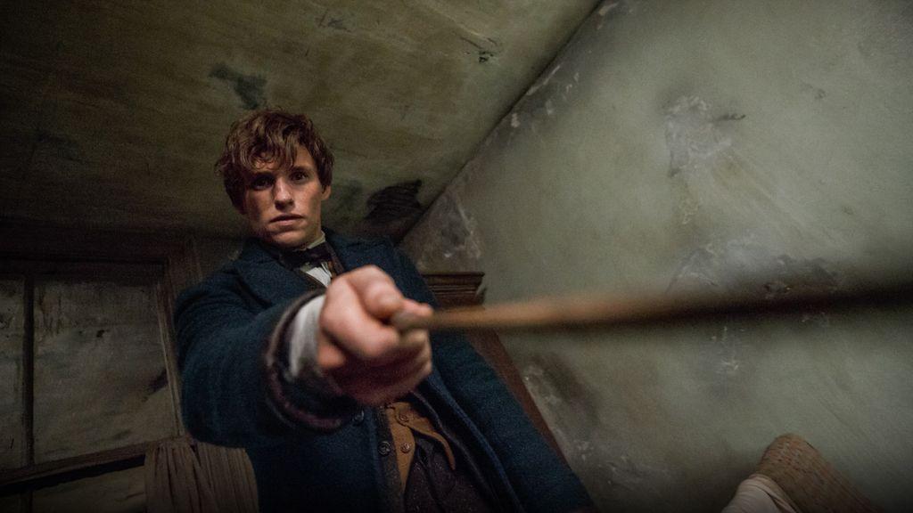 'Animales fantásticos y dónde encontrarlos' es la nueva película del universo 'Harry Potter'