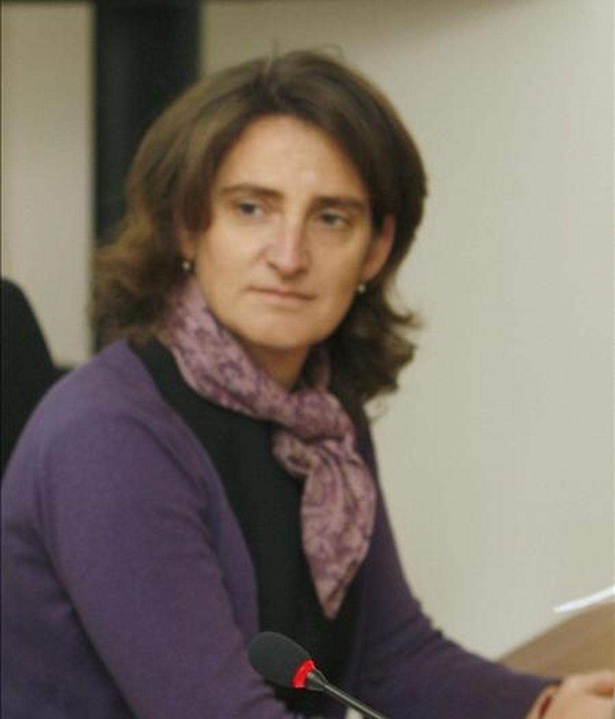 La secretaría de Estado de Cambio Climático, Teresa Ribera. EFE/Archivo