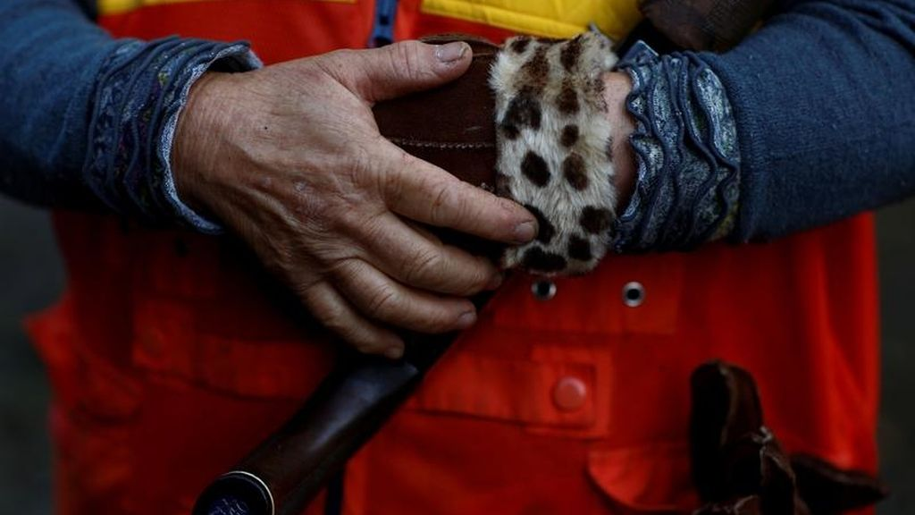Caza de ciervos en Japón