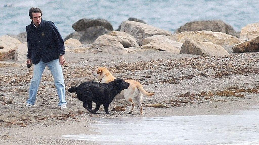 El PSOE de Marbella denunciará a Aznar por llevar perros sueltos en la playa