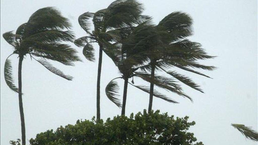 Una depresión tropical se convierte en tormenta cuando sus vientos máximos sostenidos alcanzan los 63 kilómetros por hora. EFE/Archivo
