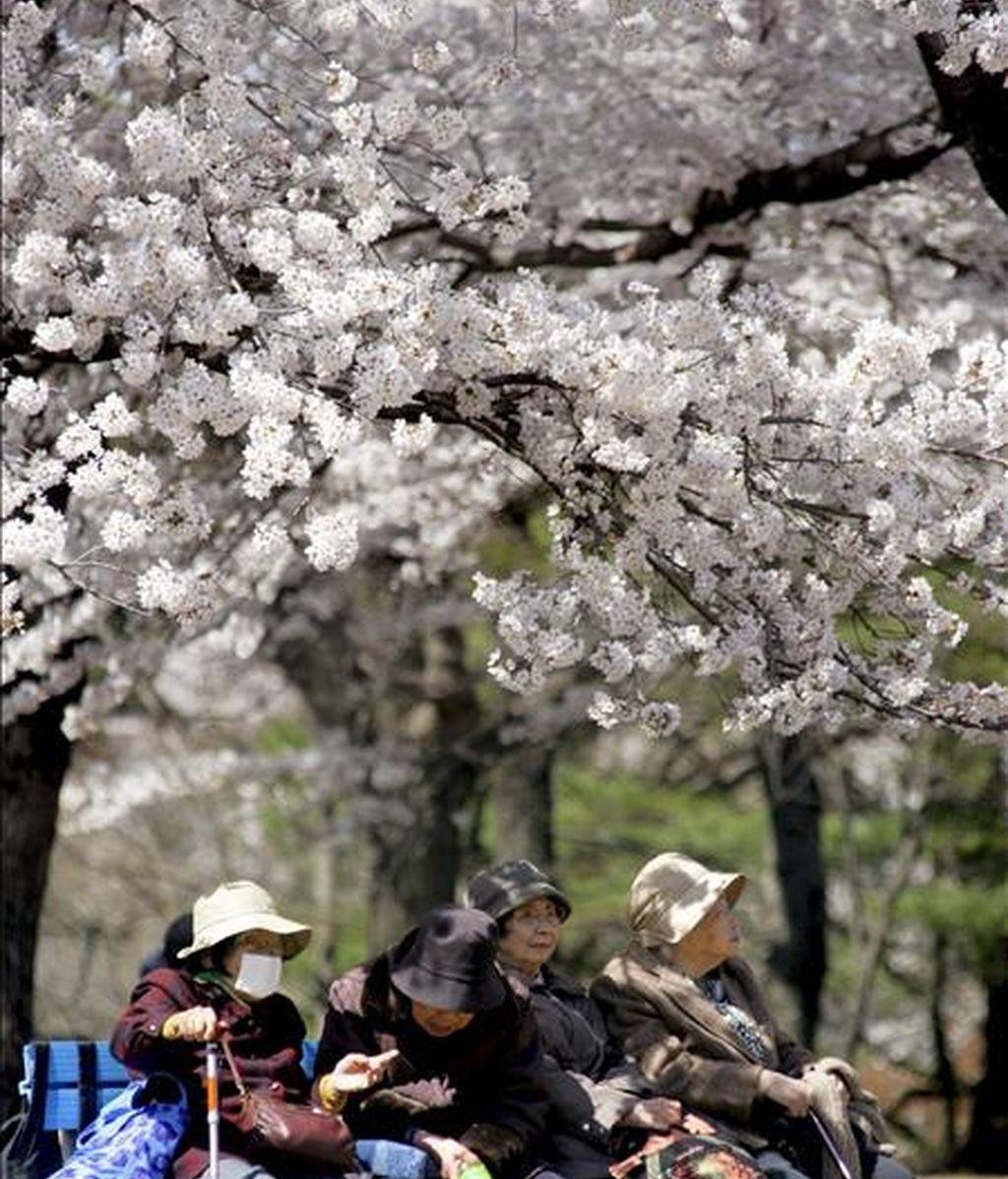 Un grupo de mujeres japonesas de una residencia de ancianos en Tokio. EFE/Archivo