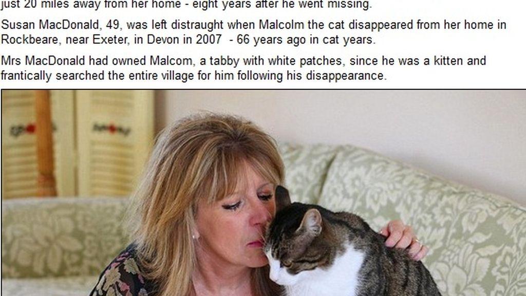 Encuentra a su gato ocho años después a 20 kilómetros de casa