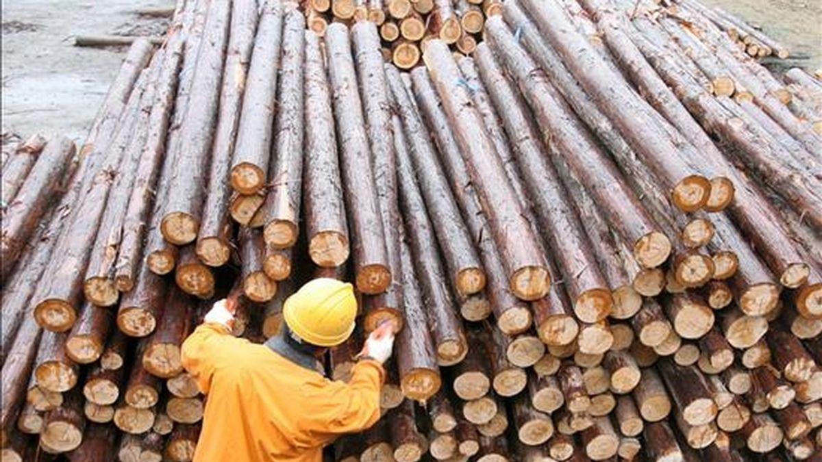Entre los subsectores de la manufactura estadounidense que crecieron en junio se encuentran el de productos petrolíferos y de carbón, madera, minerales no metálicos, químicos y metales básicos. EFE/Archivo