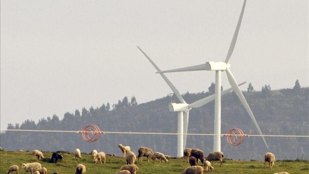 Imagen de un complejo eólico en Puebla de Guzmán (Huelva),  que con 292 megavatios (MW) de potencia instalada es en la actualidad la mayor instalación renovable de Europa continental. EFE/Archivo