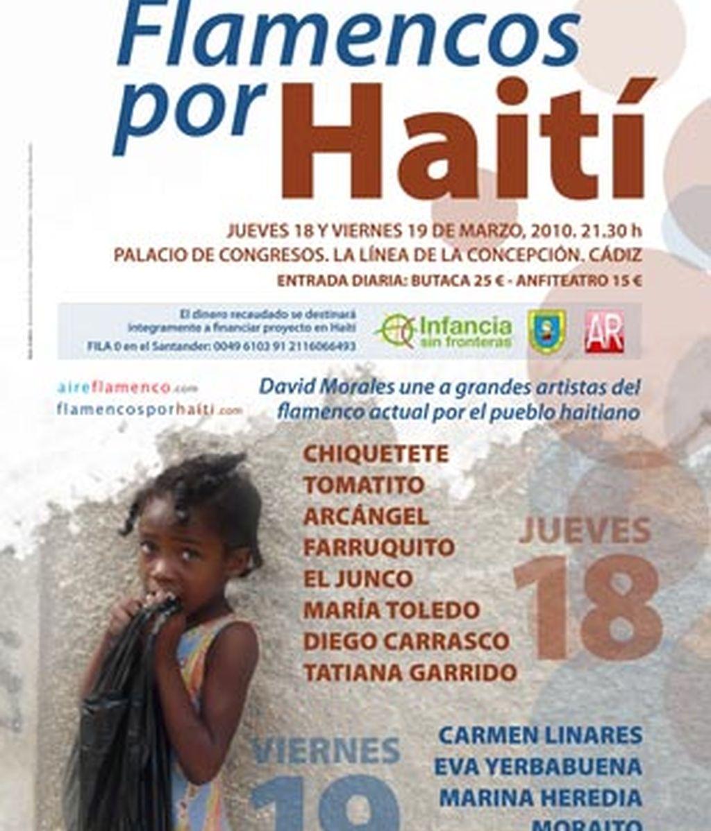 Cartel de Flamencos por Haití