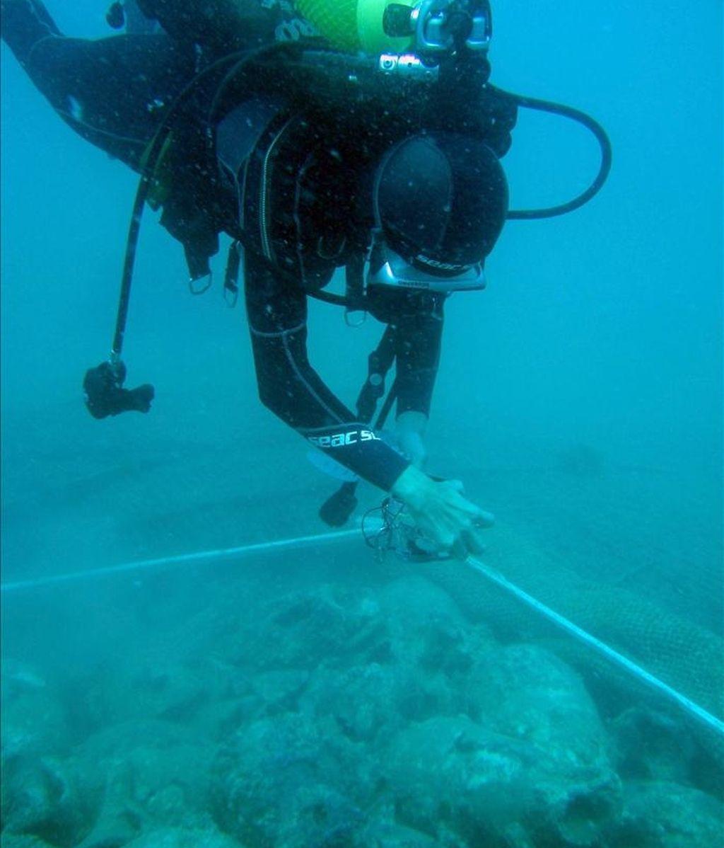 """La Armada está """"lista"""" para desarrollar las tareas de búsqueda y localización de pecios históricos sumergidos frente a las costas para evitar el posible expolio del patrimonio submarino español. EFE/Archivo"""