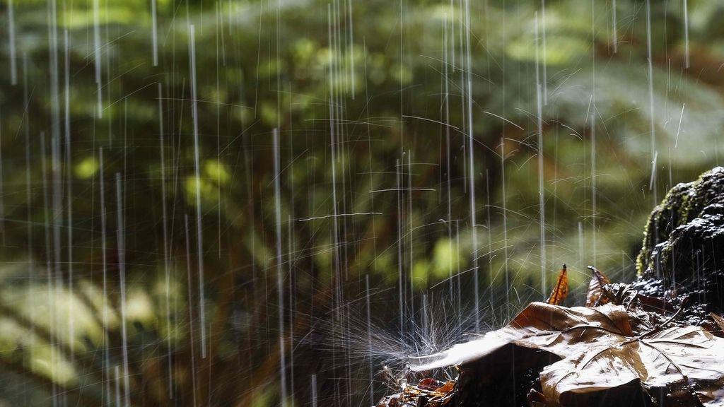 Lluvia en otoño