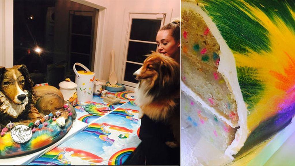 """""""¡Tarta en forma de Emu!"""" (su perro), con estampado 'tie dye'"""