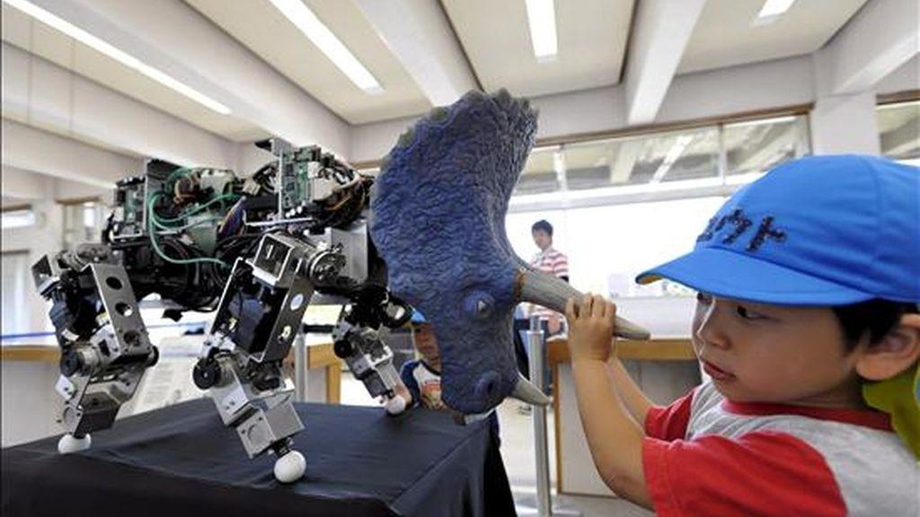 """Un niño juega con robot """"Banryu"""", (dragón guardian, en español), durante una demostración llevada a cabo con motivo de la apertura del Veda International Robot R&D Center en Munakata, al sur de Japón. EFE/Archivo"""