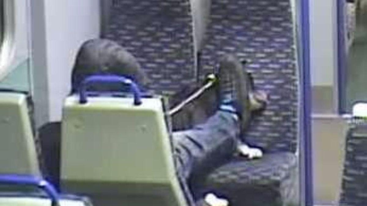 Detenido un joven por maltratar cruelmente a su perro en el tren
