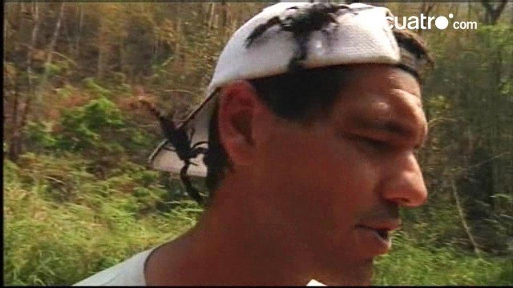 Si te cruzas con un escorpión, mantén la calma