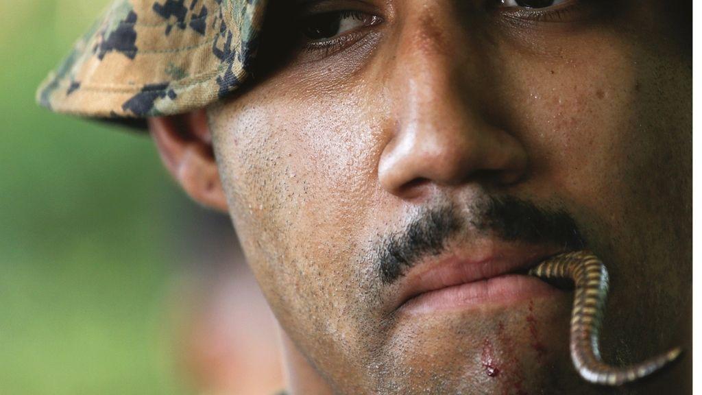 La sangre de cobra como técnica militar de hidratación