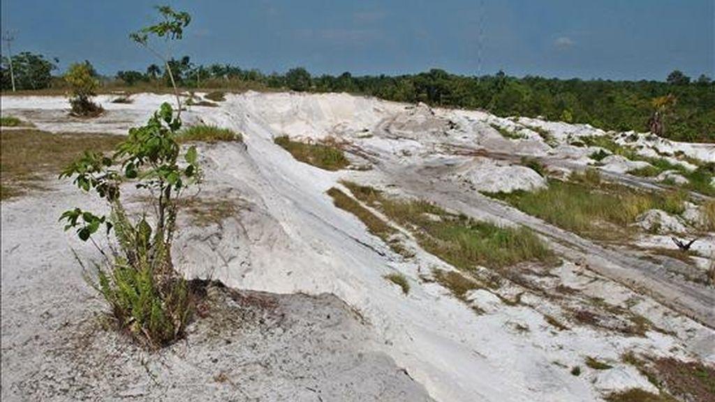 En la imagen, una vista de áreas deforestadas e irrecuperables en la amazonia peruana. EFE/Archivo