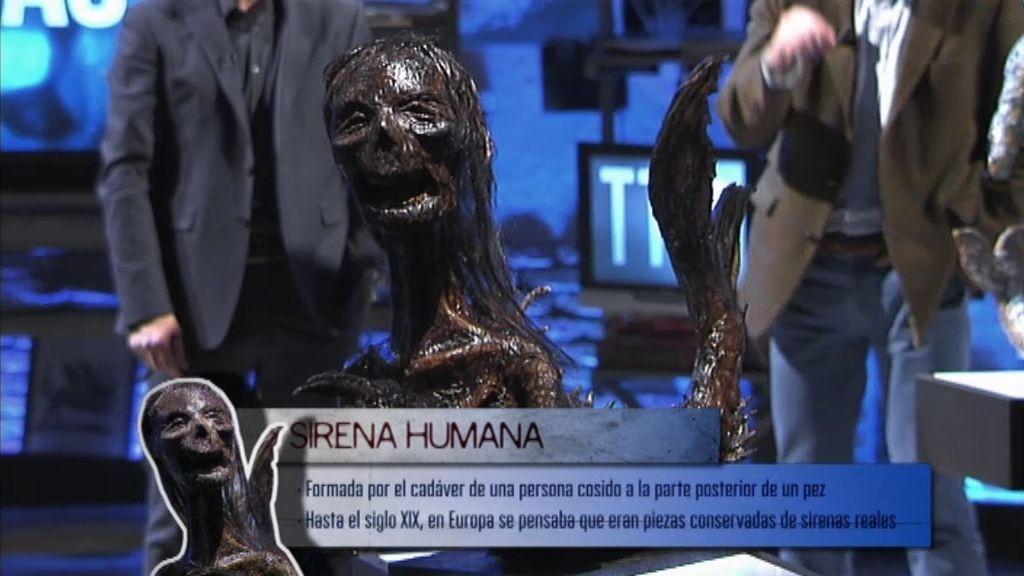 Sirena Humana