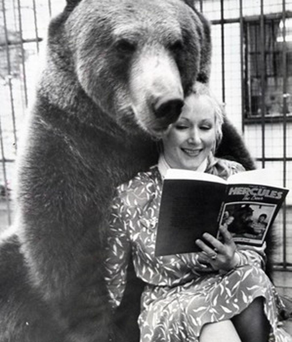 Hércules, el oso que fue criado por una pareja como su propio hijo