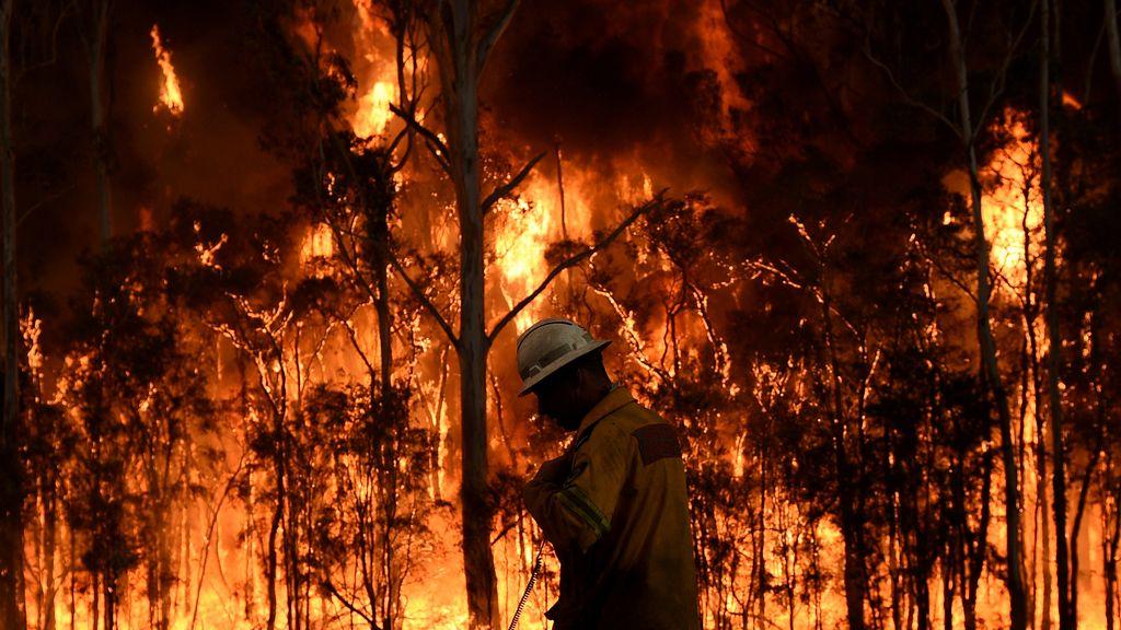 Bomberos luchando contra un fuego en Port Stephens, Australia