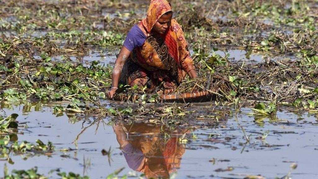 Pescando en la India
