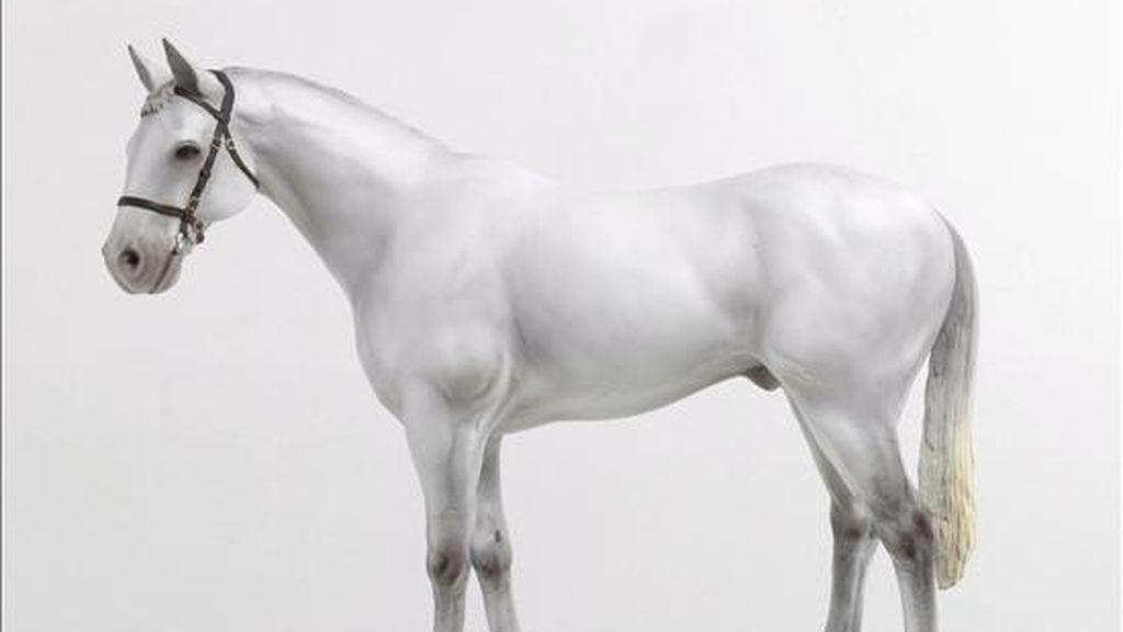 Recreación artística sin fecha cedida por el artista británico Mark Wallinger y facilitada hoy, 11 de febrero, de un gigantesco caballo blanco de cincuenta metros de altura que será colocado en la localidad de Ebbsfleet, en el condado de Kent (sureste de Inglaterra), en una nueva estación ferroviaria internacional de la línea de Eurostar, el tren de alta velocidad que une a Londres con París. El autor del proyecto es el citado Wallinger, de 49 años, quien ganó el polémico premio Turner en 2007 por su recreación del campamento de un pacifista opuesto a la guerra de Irak. Wallinger quiere ejecutar su obra en fibra de cristal y hormigón reforzado aunque no está del todo seguro, según confiesa, porque nadie ha realizado antes un proyecto de tamaña escala en el Reino Unido. EFE