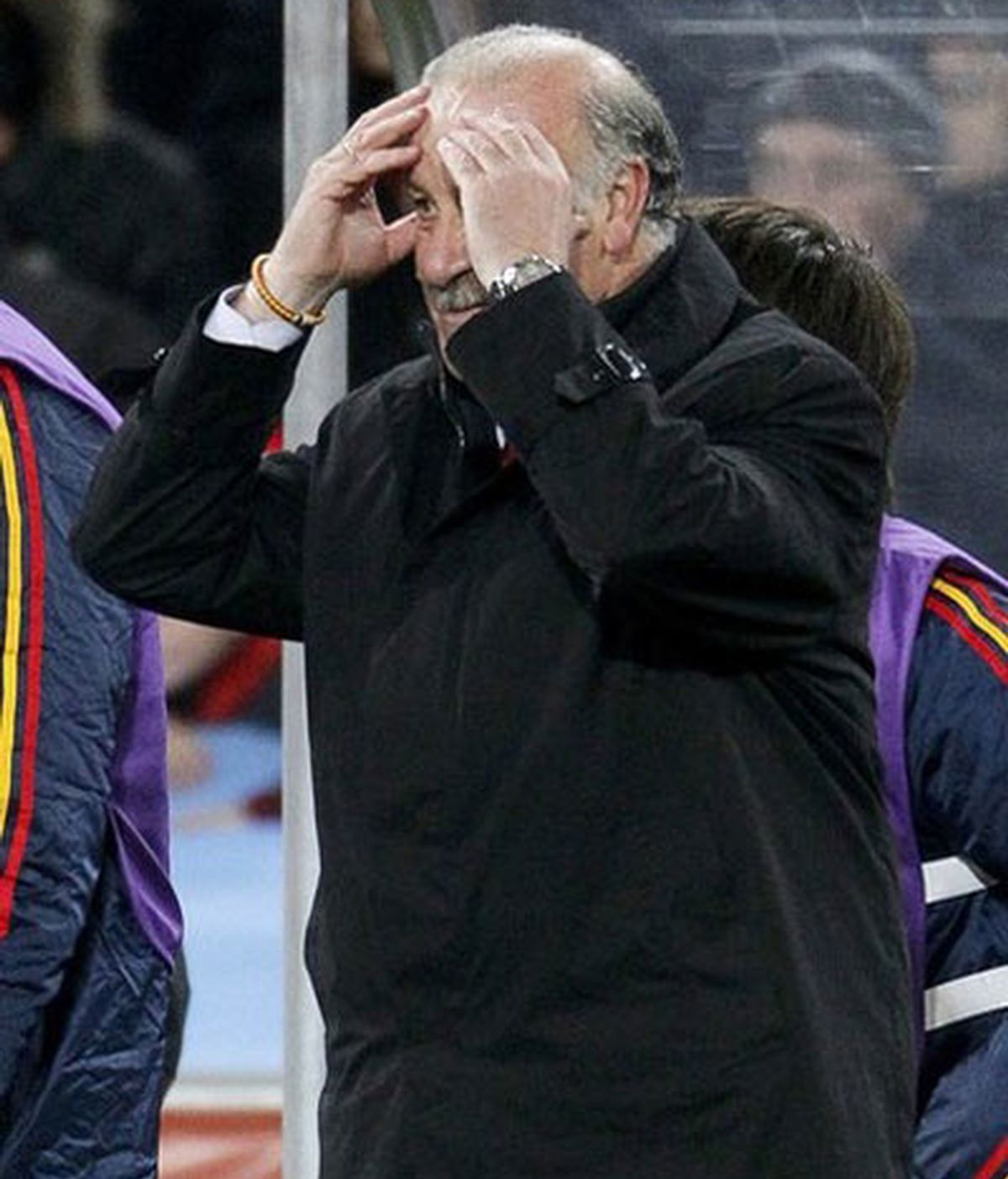 """Del Bosque: """"Hemos merecido el triunfo"""""""