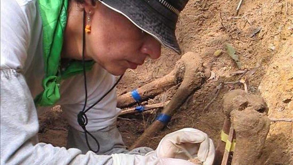 Fiscales bolivianos manejan la hipótesis de que los habitantes del lugar decidieron acabar con la vida de los extranjeros porque se dedicaban al consumo de drogas y a la comisión de delitos menores. En la foto la exhumación de los restos de otra fosa común en la región. EFE/Archivo