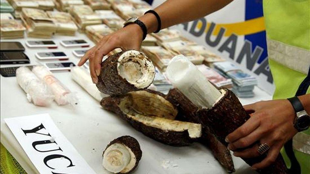 En la imagen, una agente de Policía muestra el interior de una de las yucas en las que iba camuflada casi una tonealda de cocaína intervenida hoy por la UDYCO de Alicante en una operación conjunta con agentes de la Agencia Tributaria. EFE