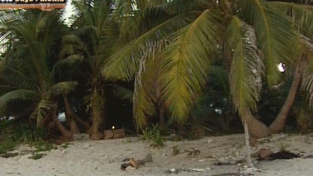 Todos a Playa Pelícano