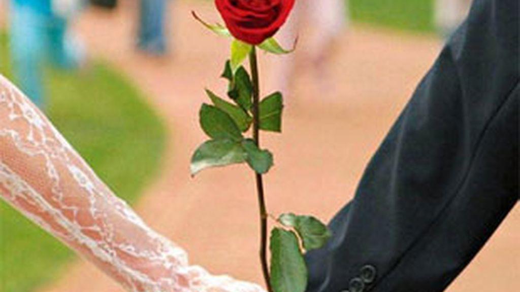 Varios problemas económicos y legales, origen de los divorcios y matrimonios.