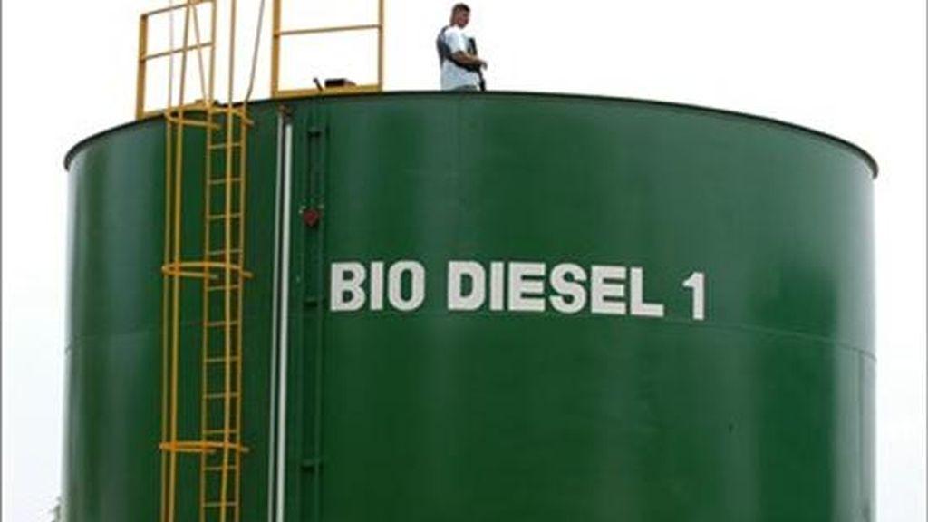 Brasil es el mayor productor y exportador mundial de etanol de caña de azúcar y el consumo del combustible alternativo en el país ya supera el de la propia gasolina. EFE/Archivo