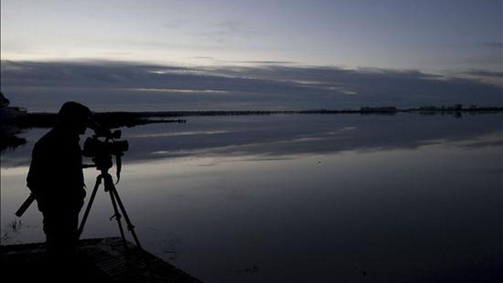 La organización ecologista WWF ha alertado de que las marismas del Parque Nacional de Doñana corren el riesgo de desaparecer si se mantiene el uso ilegal del agua y la ocupación masiva del territorio con cultivos de regadío. EFE/Archivo