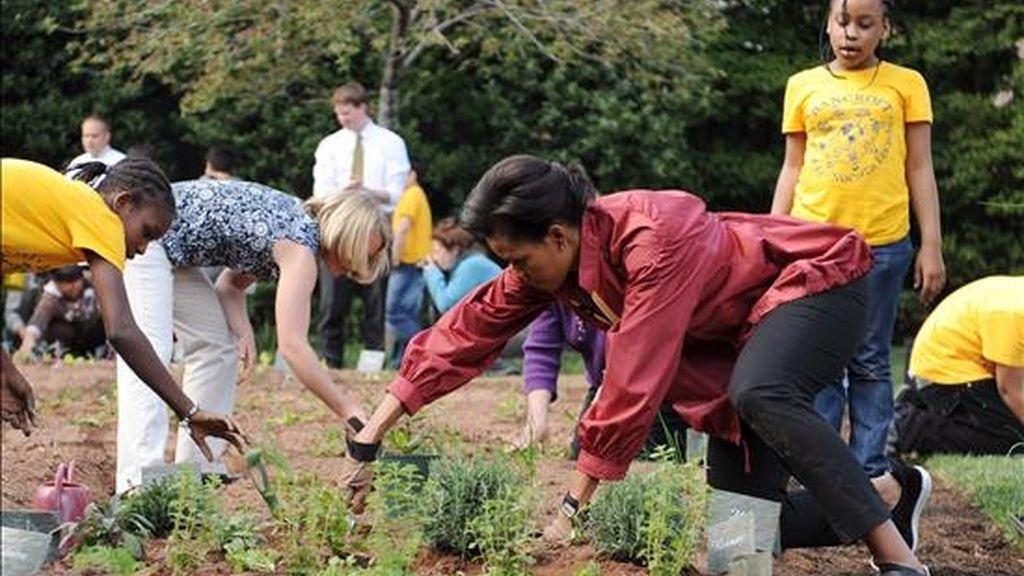 Michelle Obama ha recogido los frutos del huerto que plantó con un grupo de escolares. Foto: Atlas