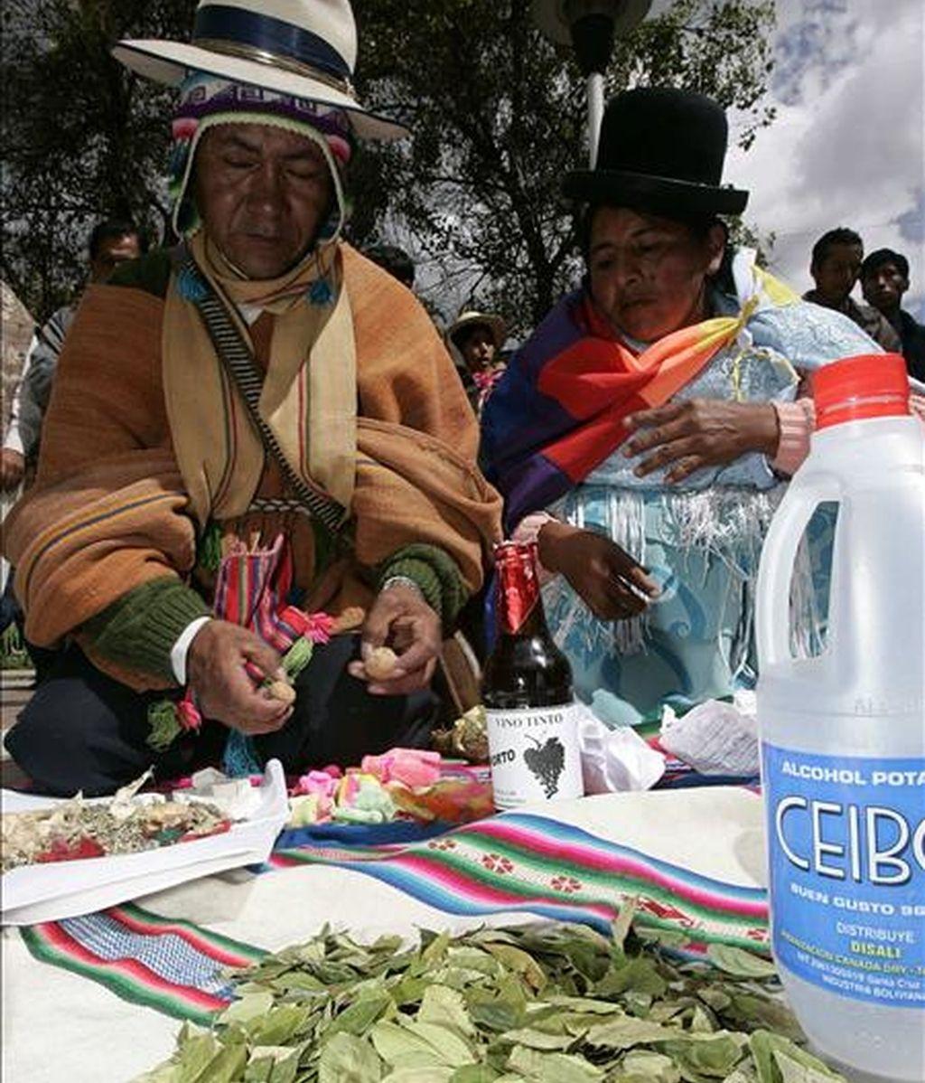 El Gobierno boliviano también considera necesario modificar la ley del Régimen de la Coca y Sustancias Controladas, a fin de evitar el incremento de las plantaciones en las zonas consideradas tradicionales. EFE/Archivo