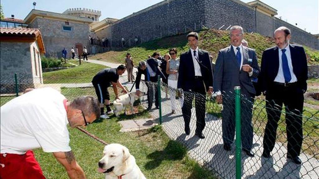 El Ministro del Interior, Alfredo Pérez Rubalcaba (d), durante la visita al penal de El Dueso, en la localidad cántabra de Santoña, en donde encontró a un grupo de reclusos que trabajan con el programa TACA (Terapia Asistida con Animales). EFE