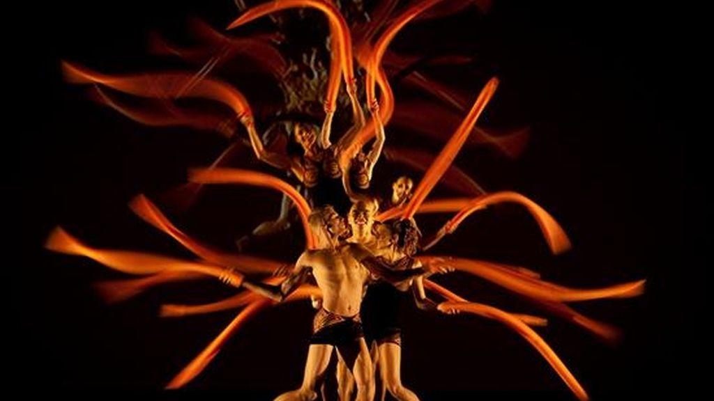 """""""Bothanica"""", de la compañía de danza estadounidense Momix, estará en la cartelera del Teatro Teletón del 16 al 28 de junio. EFE"""