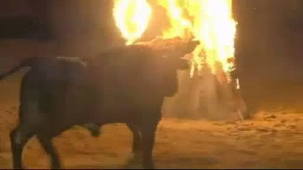 """El """"toro de fuego"""" de Medinaceli"""